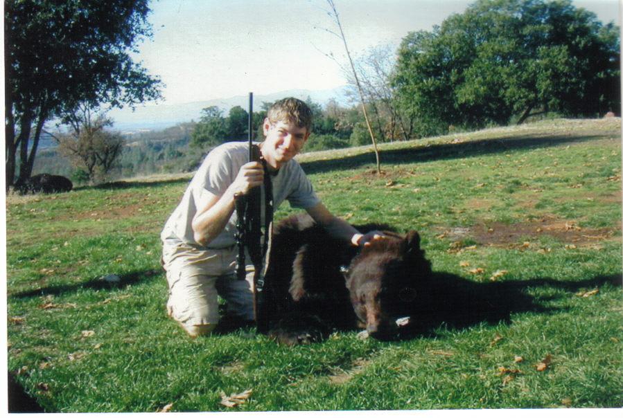 a bear 12